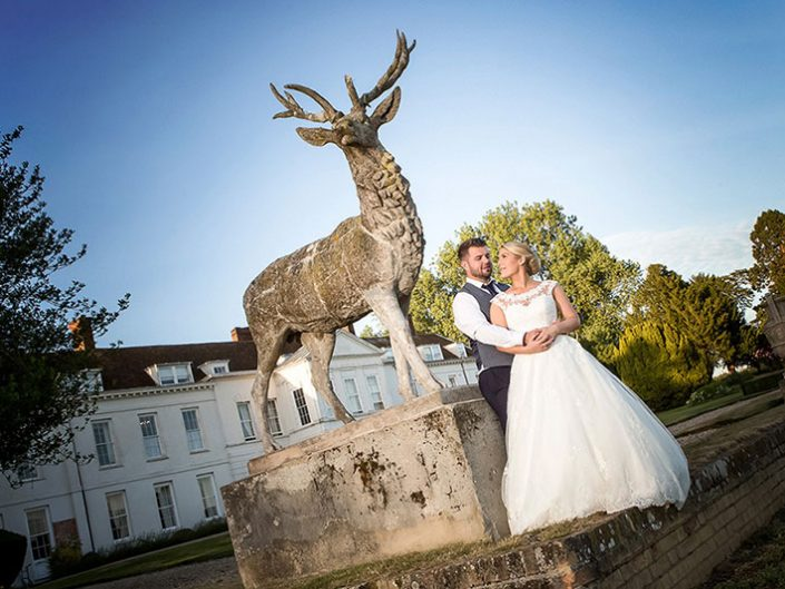 Gosfield Hall Stag